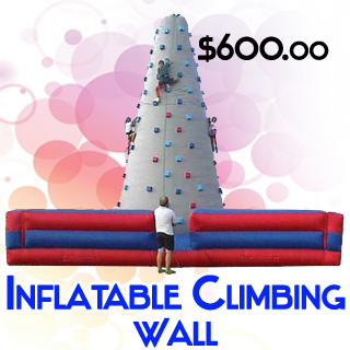 Inflatable Rock Climbing Mountain Wall